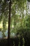 КВ Бюро Загородный дом в подмосковье пруд
